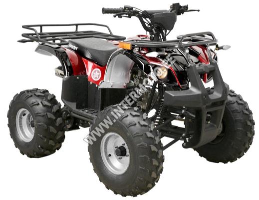 LASTE ATV HECHT HUMMER 125 - PUNANE